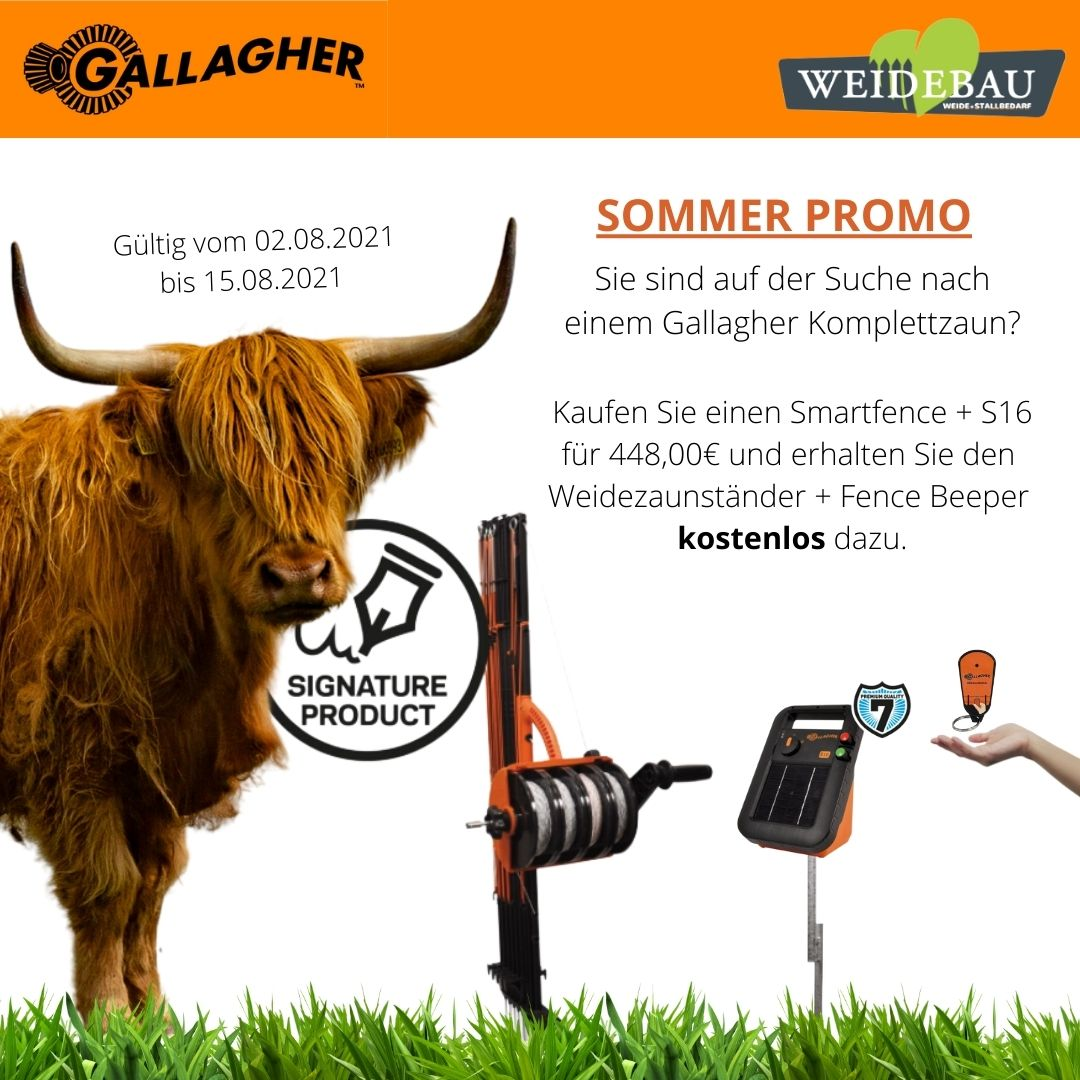 Gallagher Promo Aktion August 2021